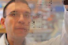 Weill Cornell Medicine Neurosurgery Research Studies