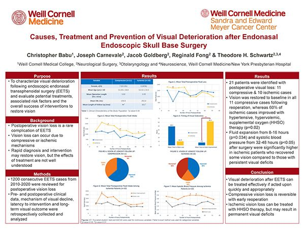 Causes, Treatment and Prevention of Visual Deterioration after Endonasal Endoscopic Skull Base Surgery