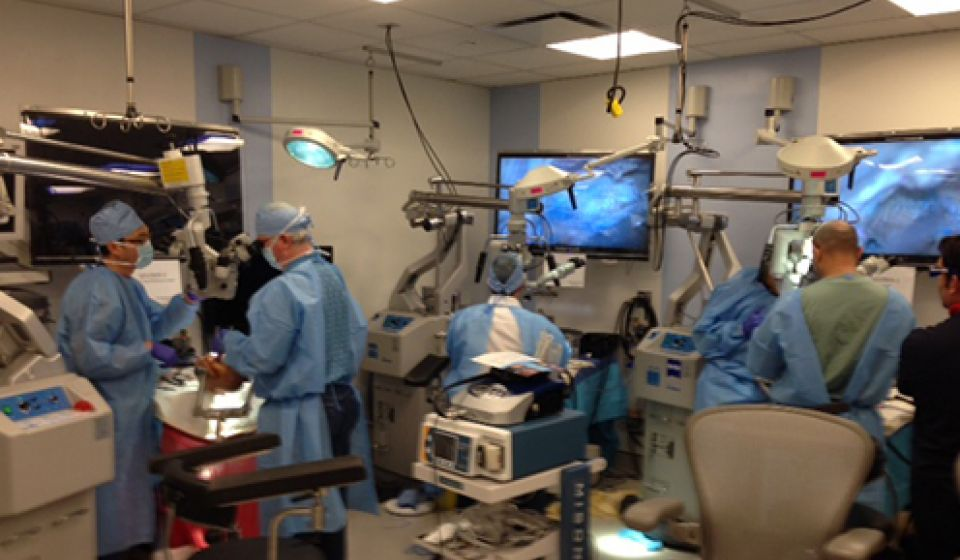 Weill Cornell Medicine Neurosurgery Skull Base Course Photos