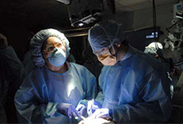 Weill Cornell Medicine Continuing Neurosurgical Education